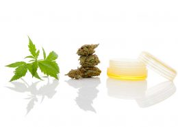CBD creams and lotions for pain